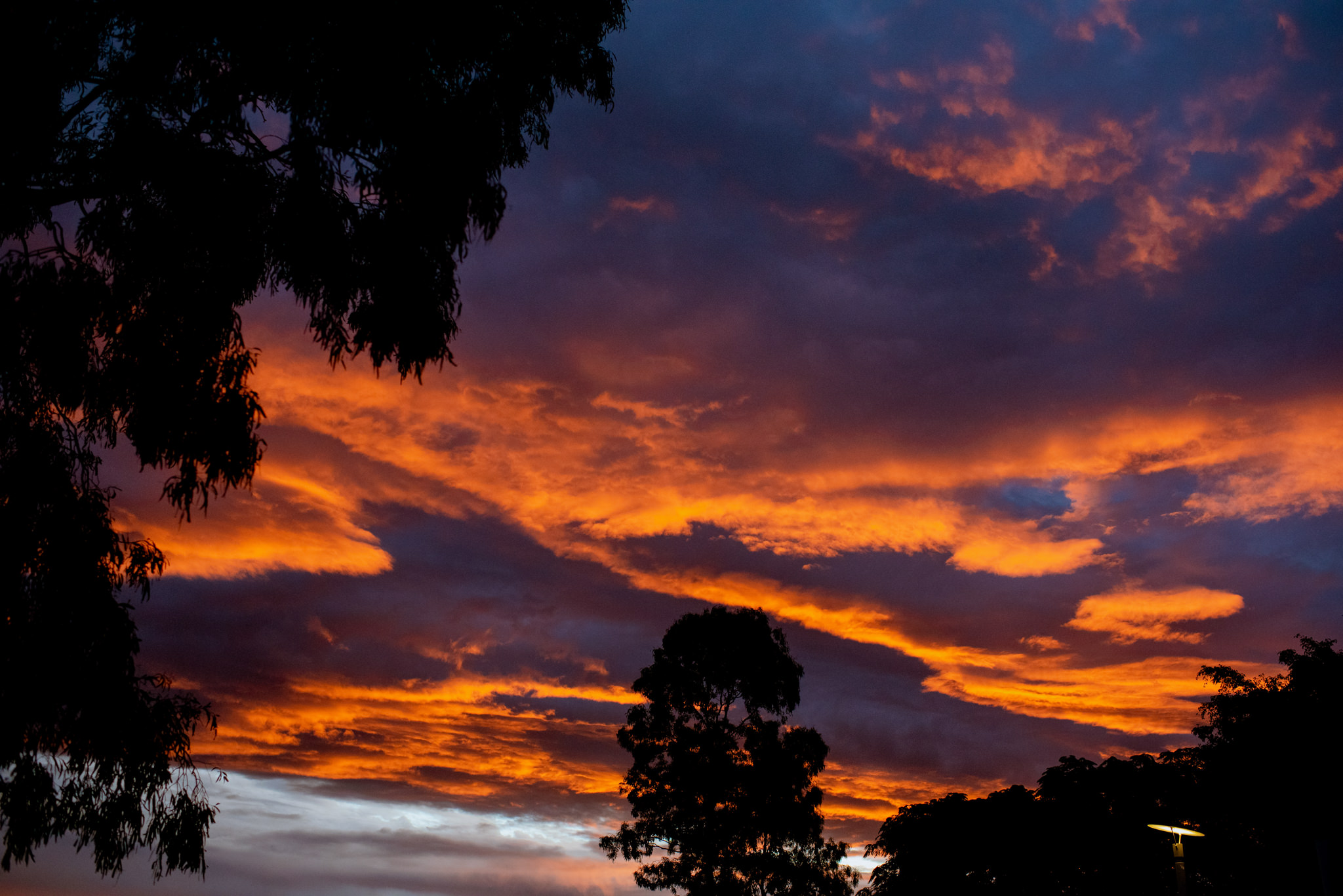 Thick clouds coloured with deep orange and purple from the light of sunset