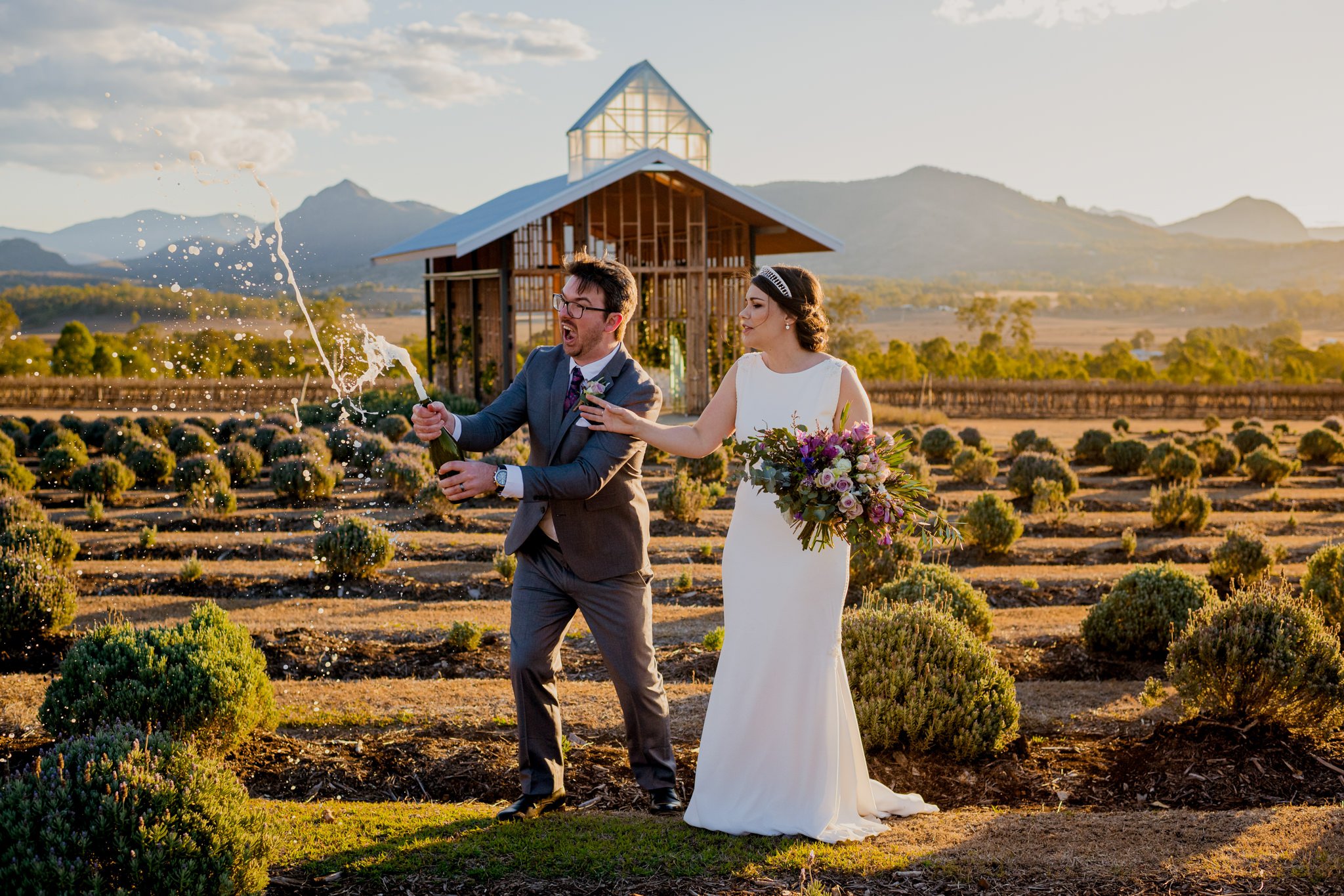 An excited groom sprays champagne as his wife looks worried at Kooroomba Lavender Farm