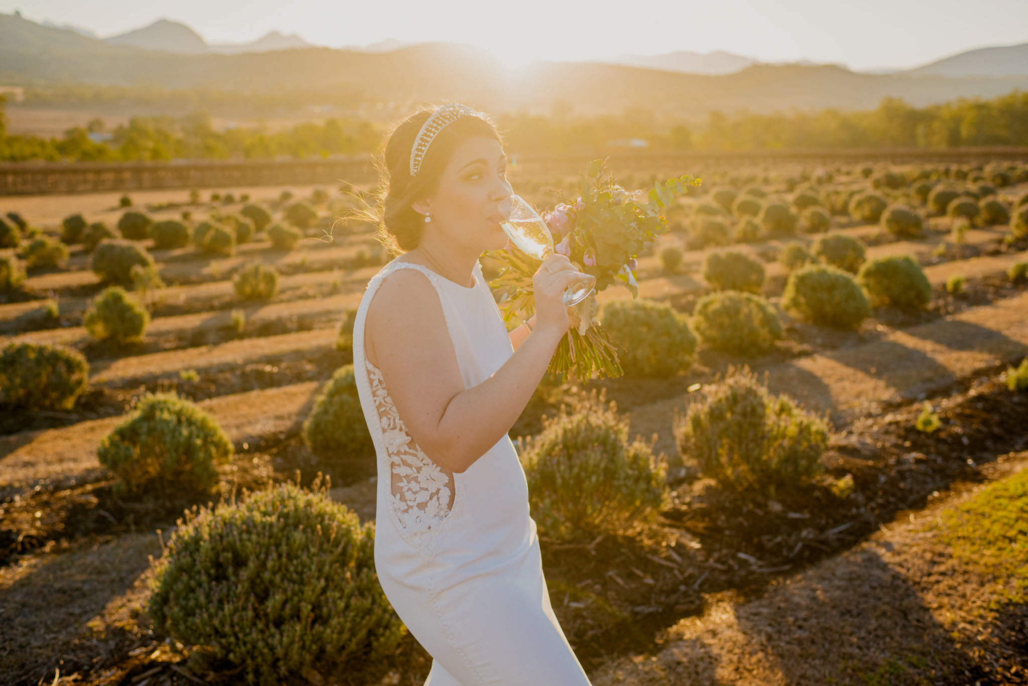 Bride holding her bouquet in a lavender farm drinking a glass of champage