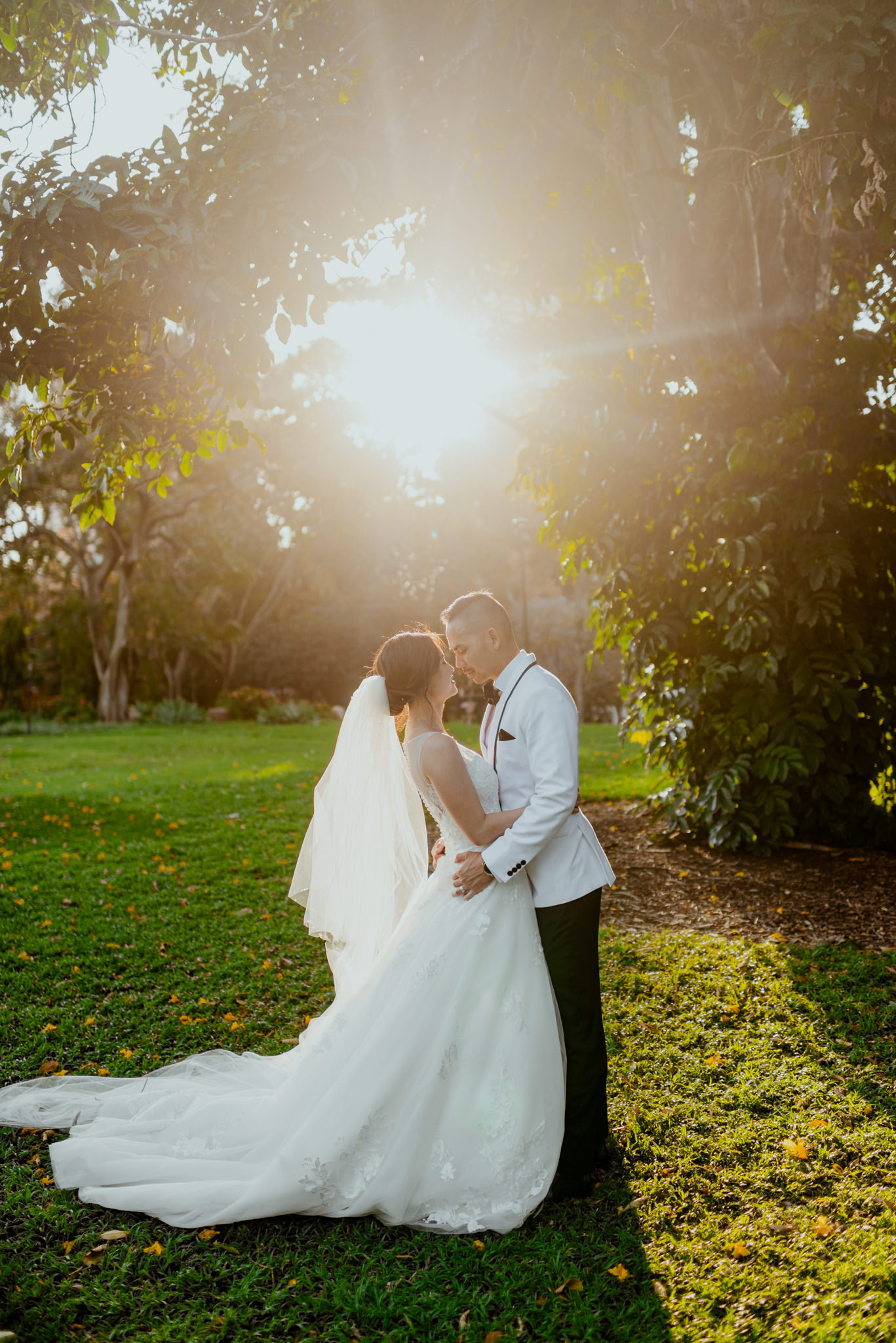 Golden sunlight shines through trees and on a bride and groom