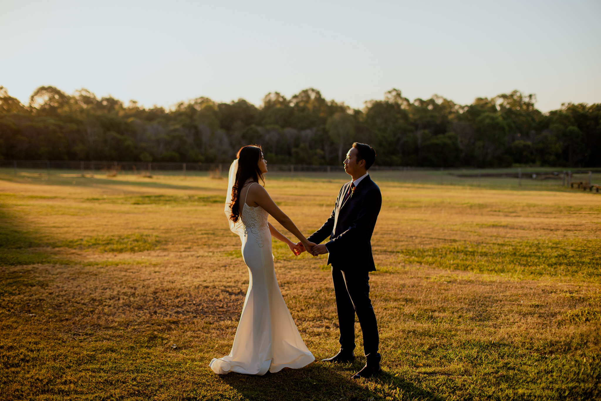 Two newlyweds hold hands in a large open field with golden light shining everywhere